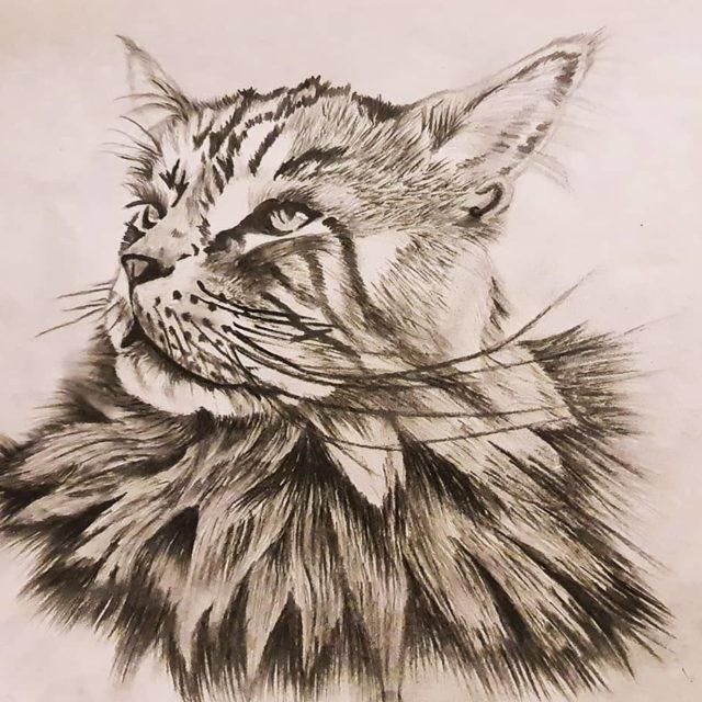 Portrait Locky